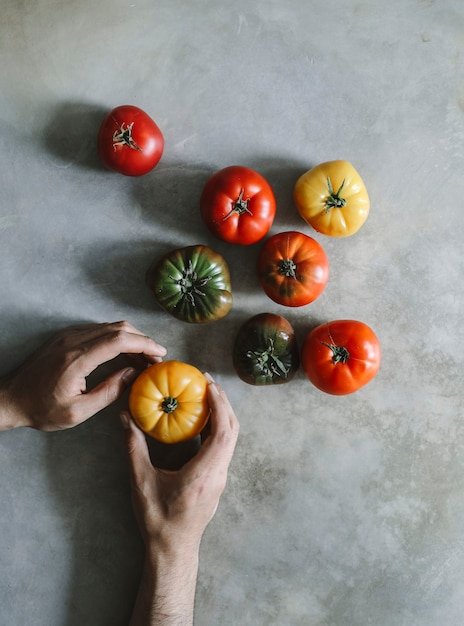 Colorful, fresh and organic heirloom tomatoes Premium Photo