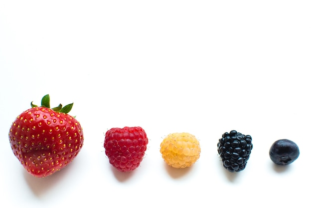 Colorful healthy fresh berries in a row on a white background Free Photo