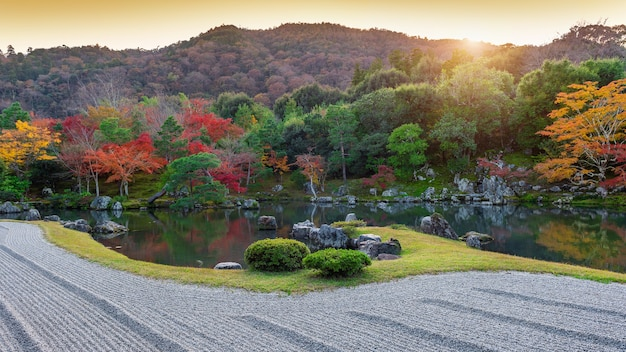 日本の秋の公園の色とりどりの葉。 無料写真
