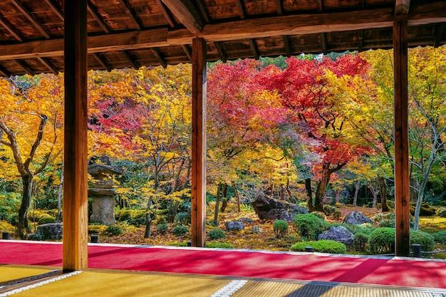 Красочные листья в осеннем парке, япония. Бесплатные Фотографии