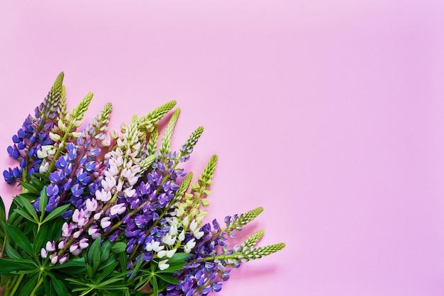 Красочный букет цветов люпина на розовом. вид сверху, копия пространства. Premium Фотографии