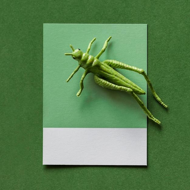 Красочный миниатюрный кузнечик на бумаге Бесплатные Фотографии