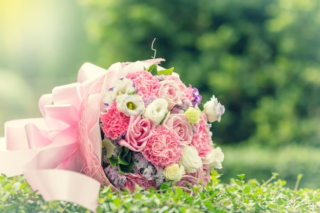 Colorful multiplicity roses Premium Photo