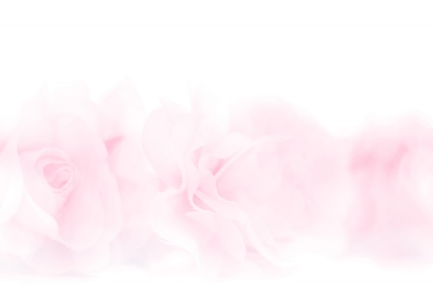 Colorful rose flowers fabric made with gradient for background Premium Photo