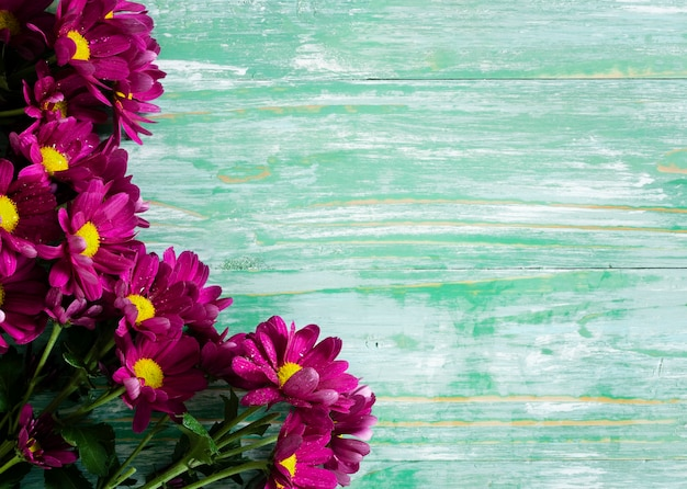 Colorful spring flowers with copy-space Free Photo