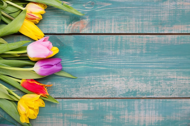 Colorful spring tulip flowers on green wooden background as greeting card Premium Photo