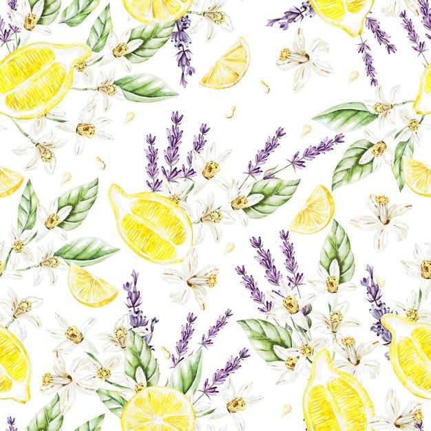レモンの果実と花、ラベンダーとカラフルな水彩パターン。イラスト。 Premium写真