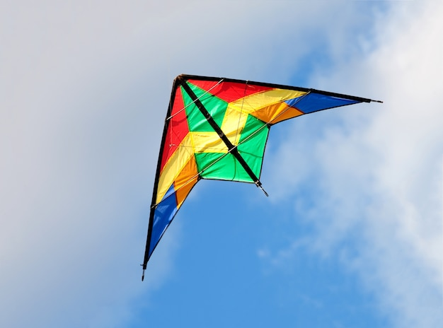 Colourful kite flying Premium Photo
