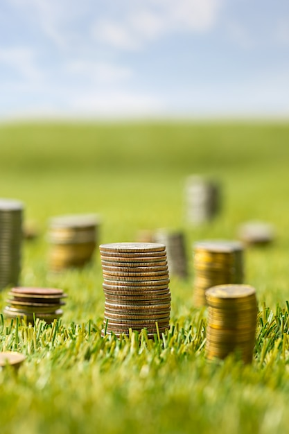 Columns of coins on grass Free Photo