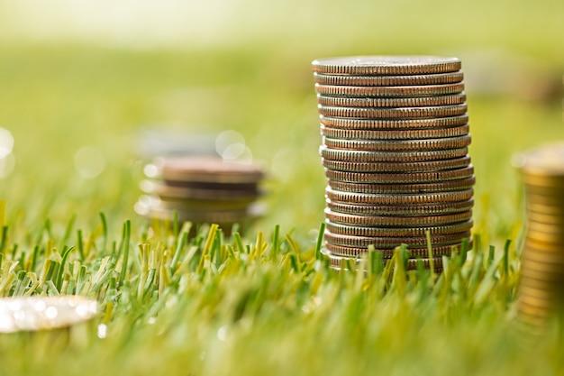 Le colonne di monete sull'erba Foto Gratuite