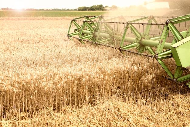 Mietitrebbiatrice lavorando nel campo di grano Foto Gratuite