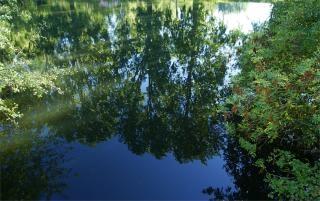 Comme un miroir dans l 39 eau photo free download for Drame dans un miroir