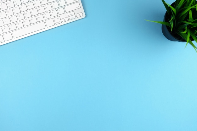 Compact white wireless keyboard on a blue backgroundwith a plant. copy space. Premium Photo