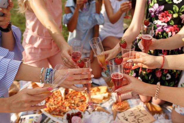 Company of girls cheers on picnic. Premium Photo