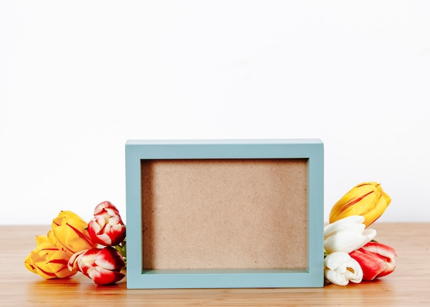 Composed blue frame and romantic tulips Photo   Free Download