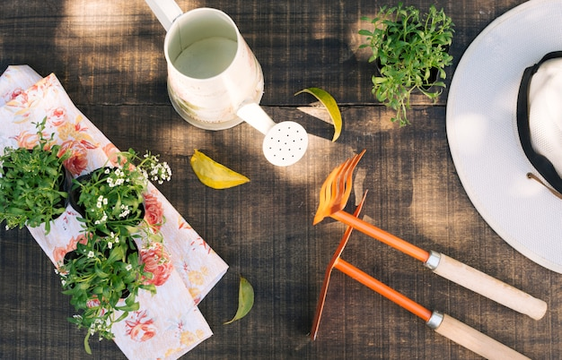 Composed flowerpots with tools Free Photo