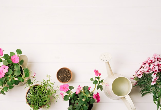 Composed flowerpots with watering pot Free Photo