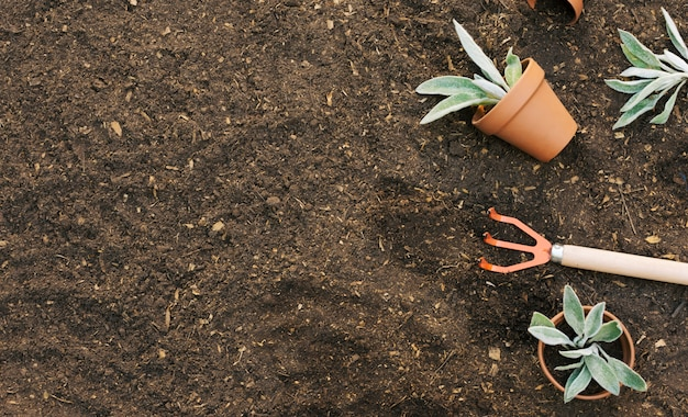 Composed rake with flowerpots on ground Free Photo