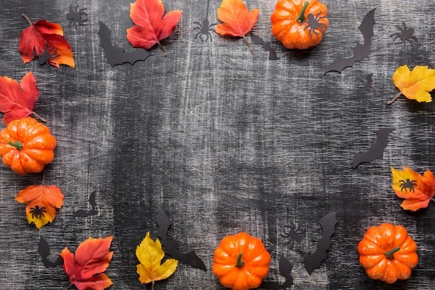 Composition of halloween elements Free Photo