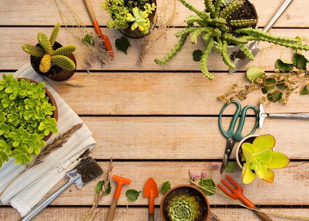 Состав различных растений и инструментов Бесплатные Фотографии