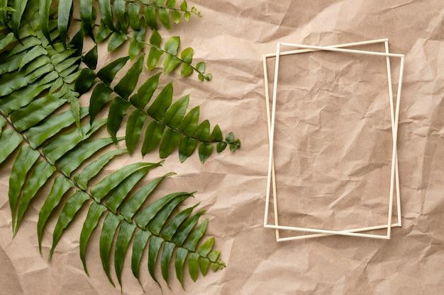 빈 프레임 녹색 잎의 구성 무료 사진