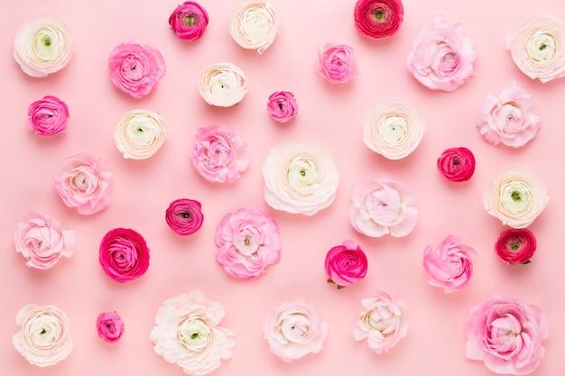 ピンクの花の組成 Premium写真