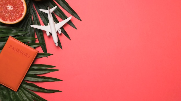 Composition of toy jet passport grapefruit and plant Free Photo