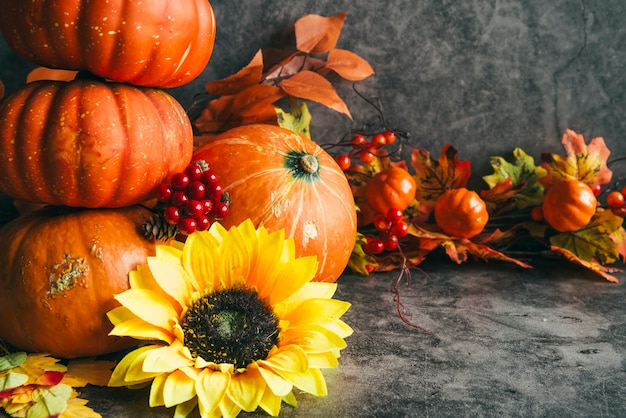 Composition with autumn harvest Free Photo