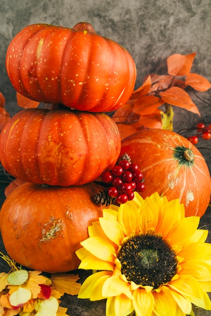 Composition with autumnal ripe pumpkins Free Photo