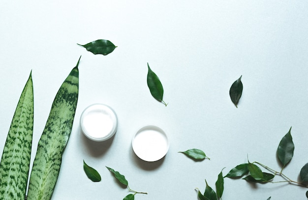 . composition with body care products, wisp and green leaf on white background, top view,  flat lay. Premium Photo