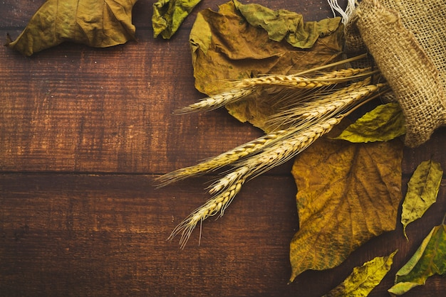 Composition with dried leaves and burlap sack Free Photo