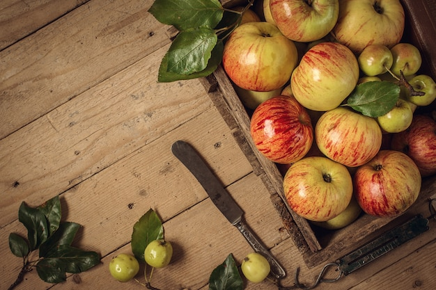 Composition with fresh apples on old  table. toned photo Premium Photo