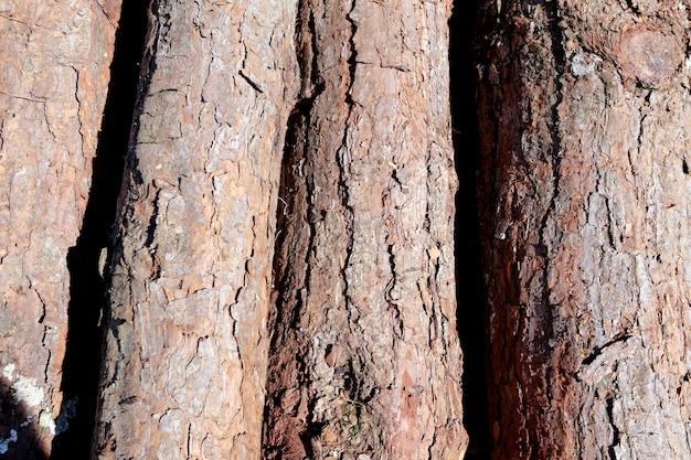 Композиция с кучей деревянных сундуков в крупным планом Premium Фотографии