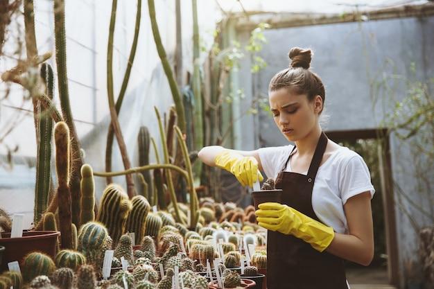 植物を保持している温室に立っている若い女性を集中 無料写真