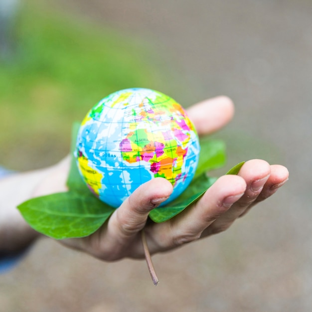 Concept arm with leaves and globe Free Photo