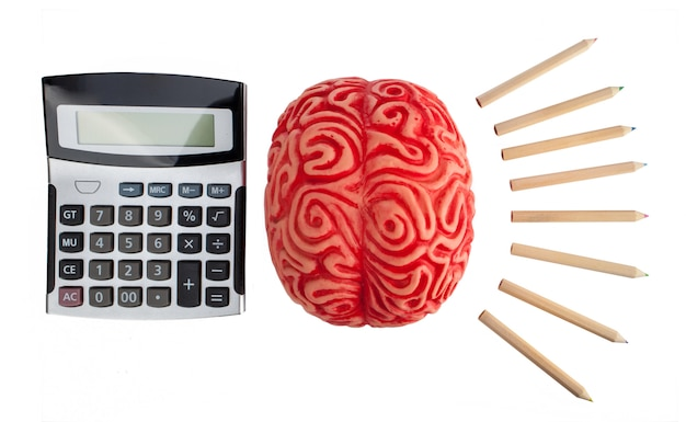 Concept of brain hemispheres between logic and creativity. Premium Photo