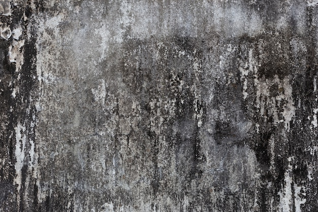 Concrete vintage wall background. Free Photo
