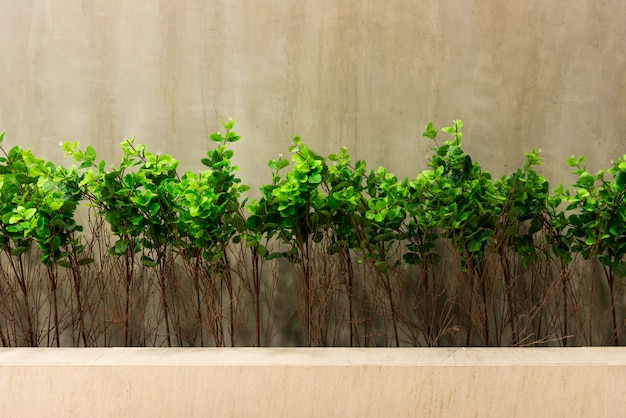 Concrete wall with green leaves Premium Photo