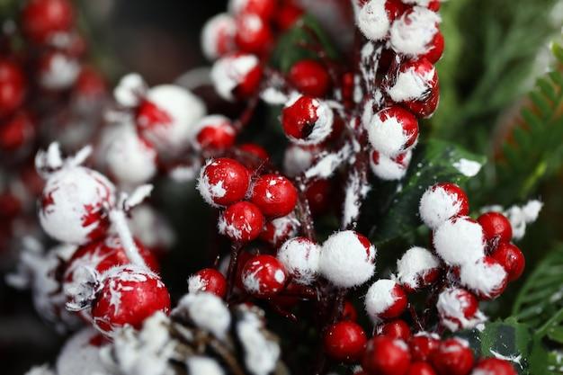 家の装飾のための雪の中のコーン、モミの木、ナナカマドの小枝。 Premium写真