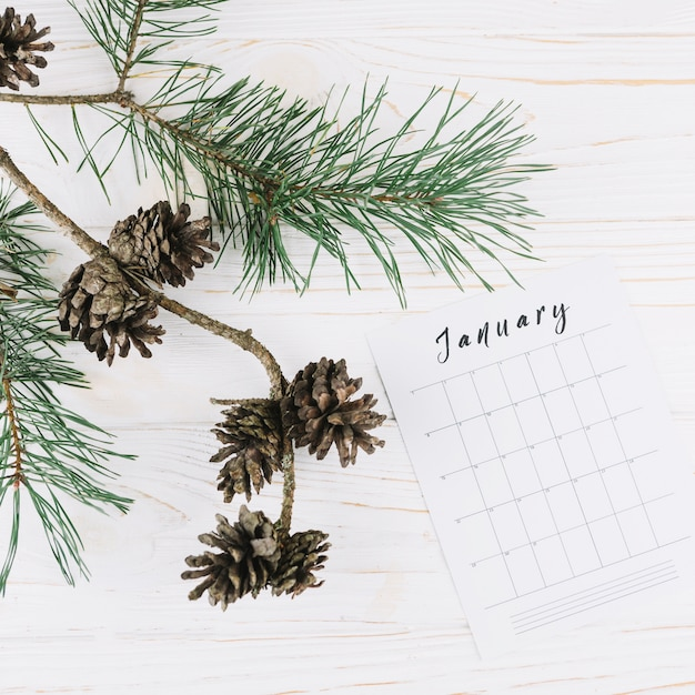 Cones with january calendar on table Free Photo