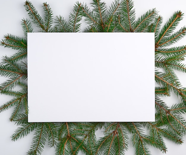 Congratulatory christmas surface with an empty white sheet and green branches Premium Photo
