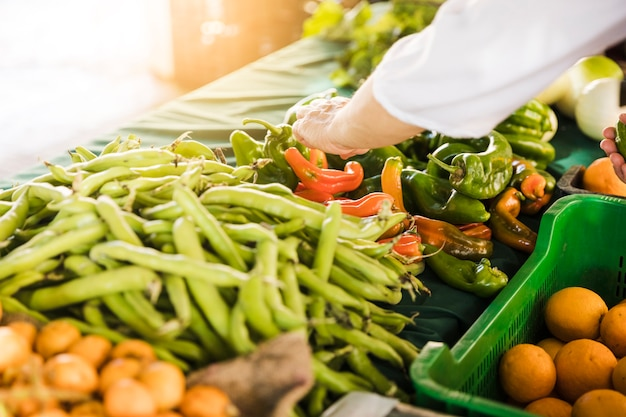 Consumer's hand choosing fresh vegetable at grocery store market Free Photo