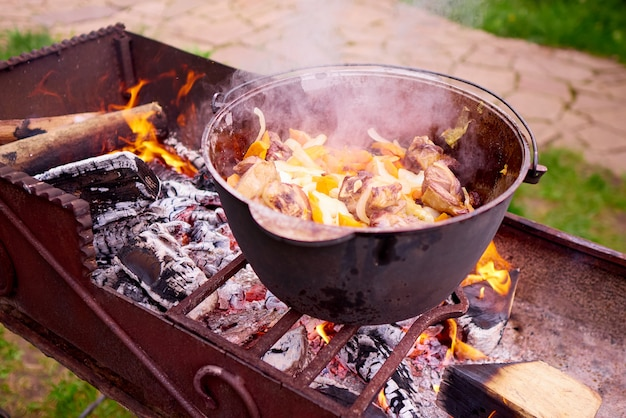 Cooking meat with vegetables on the fire. Premium Photo