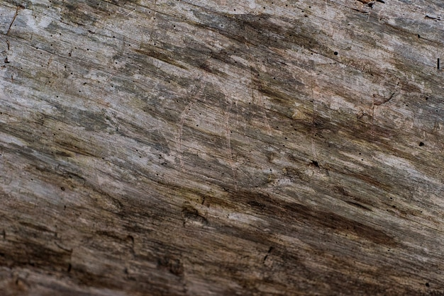 Raffreddi il fondo di legno arrugginito stagionato grungy Foto Gratuite