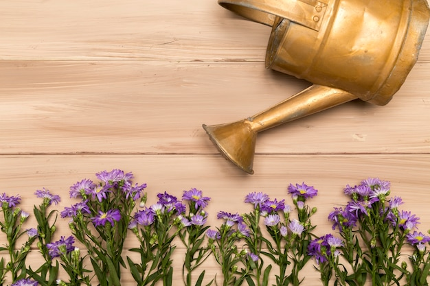 Copper watering can and purple flowers Free Photo