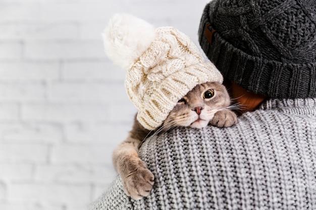 Copy-space cute cat weating fur cap Free Photo