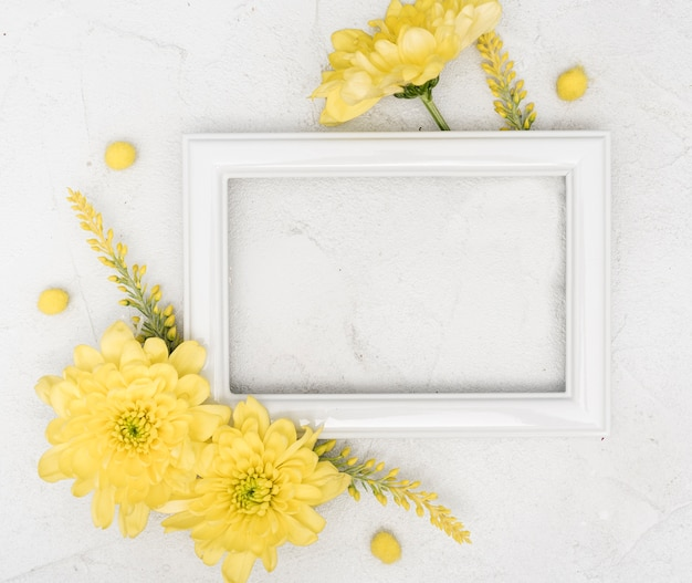 Copy space spring yellow gerbera flowers and frame Free Photo