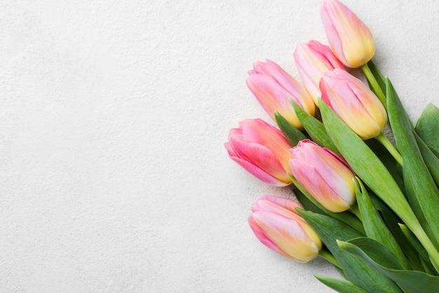 Copy-space tuilps bouquet Free Photo