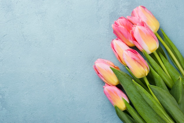 Copy-space tulips bouquet Free Photo