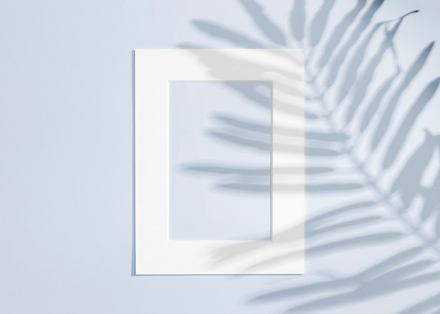Copy space white frame and leaves shadow Free Photo